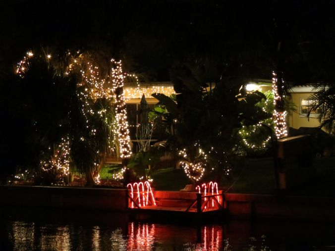 Christmas lights reflected in the canal.