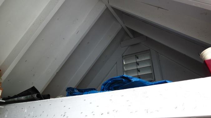 Potting Shed Loft