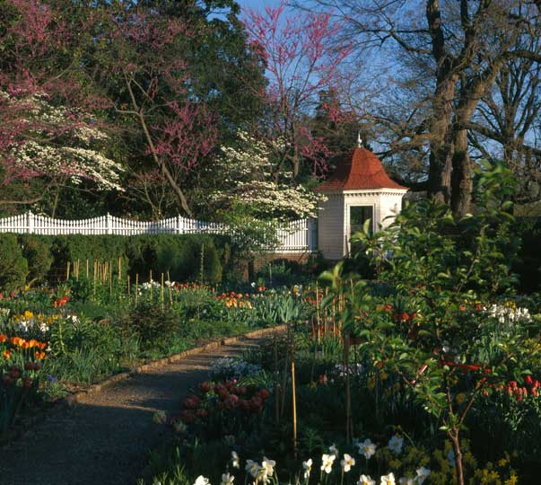 The gardens at Mount Vernon. Photo courtesy of Mountvernon.org.
