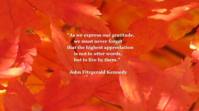 In light of the Thanksgiving holiday and recent 50 year anniversary, I thought these words were appropriate.  Happy Thanksgiving.