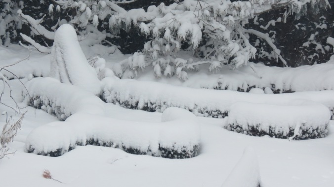 This weather is one of the main reasons I created my version of a knot garden.