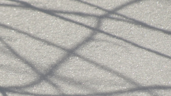 Snow shadows.