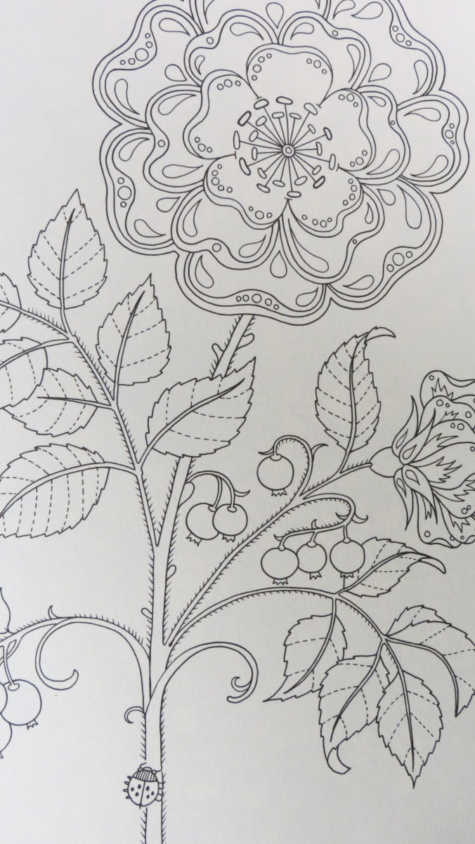 coloring pages hard secret garden - photo#9