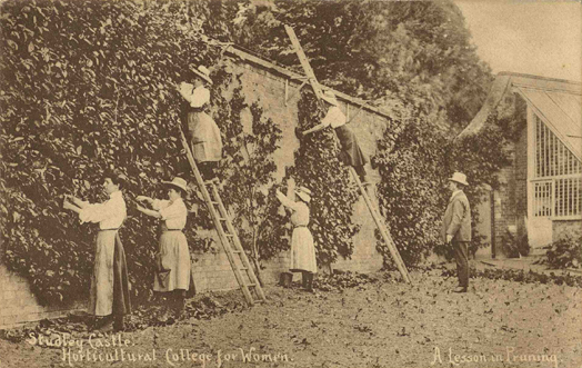 Female students learn the art of pruning at Studley College, 1910. Photo courtesy of The Garden Museum/London.