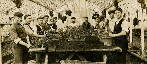 The garden staff propagated and potted thousands of bedding plants each year. Photo courtesy of The Garden Museum/London.