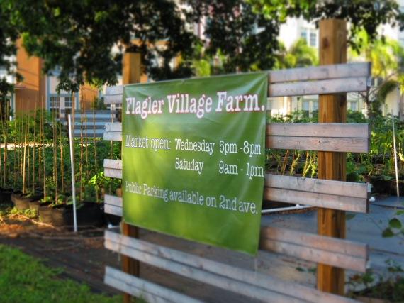 Flagler Village Farm