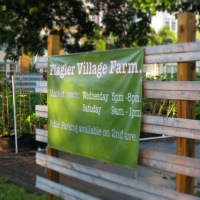 A Farm Grows In Fort Lauderdale